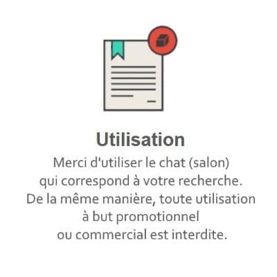 Règles du Tchat Gratuit de Rencontre-Timide.eu